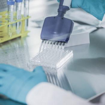 dedicated to providing superior quality nanocellulose